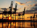 Harbour Cranes  Tacoma  Washington