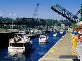 Onlookers at Hiram Chittenden Locks  Seattle  Washington