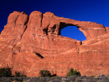 Skyline Arch with Pinyon Pines and Utah Juniper Trees at Base  Arches National Park  Utah