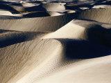 Coastal Sand Dunes  Dunas de Soledad  Guerrero Negro  Baja California Sur  Mexico