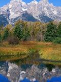Grand Teton Reflection  Grand Teton National Park  Wyoming