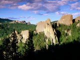Rock Formations and Pine Forest  Black Hills  South Dakota