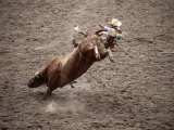 Man Bullriding at Cheyenne Frontier Days Rodeo  Cheyenne  Wyoming