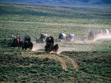 Dusty Horse Carriage Trek  Mormon Pioneer Wagon Train to Utah  Near South Pass  Wyoming