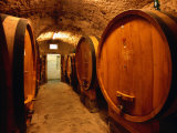 Aging Barrels in Castellina in Chianti Enoteca  Chianti  Tuscany  Italy
