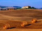Field with Round Hay Bales  Val d'Orcia Valley  Tuscany  Italy