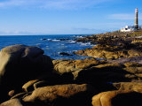 Rocky Coastline and Lighthouse  Cabo Polonio Forest Park  Rocha  Uruguay
