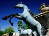 Bronze Horse Fountain in Scottsdale  Phoenix  Arizona