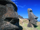 Half Submerged Traditional Moai at Rano Raraku  Easter Island  Valparaiso  Chile