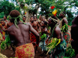 Villagers Performing Traditional Dance at Iunier Kastom Village  Tanna Island  Tafea  Vanuatu
