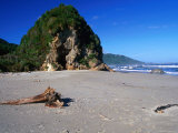 Rock Formation and Driftwood on the Beach at Woodpecker Bay  New Zealand