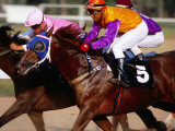 Horse Racing at Saigon Racing Club District 11  Ho Chi Minh City   Vietnam