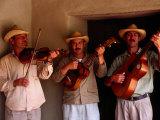 Folk Musicians at Los Aleros Theme Park  Merida  Venezuela