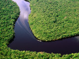 Boat Rounding a Bend on Carrao River  Canaima National Park  Bolivar  Venezuela