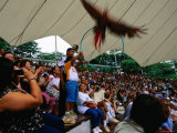 Crowd at Jurong Bird Park Bird Show  Singapore