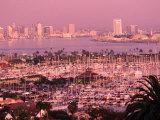Downtown Skyline at Sunset  San Diego  California