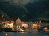 Sunrise on Port  Collioure  Languedoc-Roussillon  France