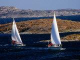 Sailboats Cruising in Bohuslan Archipelago  Mollosund  Vaster-Gotaland  Sweden