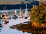 Boats on Kingsbridge Estuary at East Portlemouth  Evening  Salcombe  Devon  England