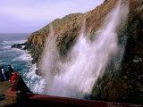 Visitors Watching La Bufadora Sea Spout  Ensenada  Baja California  Mexico