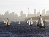 Yachts on Sydney Harbour in Late Afternoon