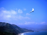 Hang Gliding at Fort Funston  San Francisco  California