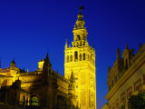 Giralda Illuminated at Night  Seen from Plaza del Triunfo  Sevilla  Andalucia  Spain