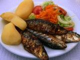 Sardinhas Gerlhadas  a Favourite Meal in Portugal  Cascais  Estremadura  Portugal