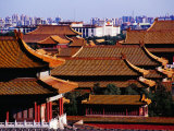 Tiled Roofs of Forbidden City from Jingshan Park  Beijing  China