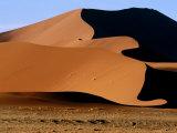 Oryx with Sand Dunes in Background  Namib Desert Park  Hardap  Namibia