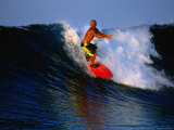 Surfer on Wave Known as Hollow Trees  Mentawai Islands  Sumatra  Indonesia