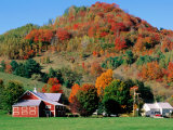 Farm Surrounded by Autumn Foliage  Near St Johnsbury  St Johnsbury  Vermont