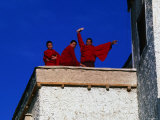 Monks on Rooftop of Monastary  Tikse  Jammu and Kashmir  India