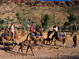 Camel Riding on the Sandy Bed of Todd River at Heavitree Gap South of Alice Springs  Australia