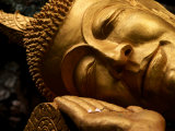 Sleeping Buddha Head with Frangipani Petals in Open Palm  Luang Prabang  Laos