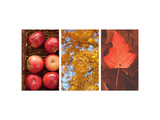 Signs of Autumn Triptych
