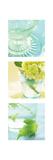 Aqua Spa Triptych
