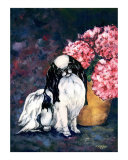 Japanese Chin and Hydrangeas