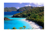 Trunk Bay Beach  St John  US Virgin Islands