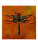 Dragonfly Zoe