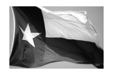 Texas Flag BW