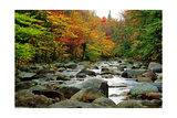 Autumn Colors  Lost River  New Hampshire
