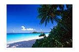 Caribbean Beach  Saint John  USVI