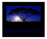 Opportunity Motivational