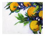 Janets Oranges 1