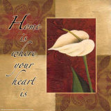 Calla Lily  Home