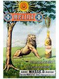 Liqueur Melina