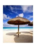 Palapa Umbrella on Cancun Beach  Mexico
