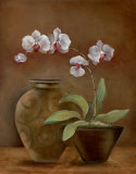 Orchid Antiquity II
