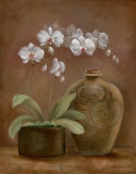 Orchid Antiquity I